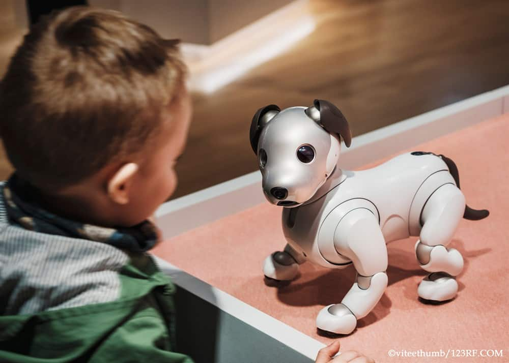 AIBO Vs Poo-Chi which is the best robotic canine