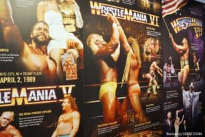 Best Wrestlers Of The 1980s
