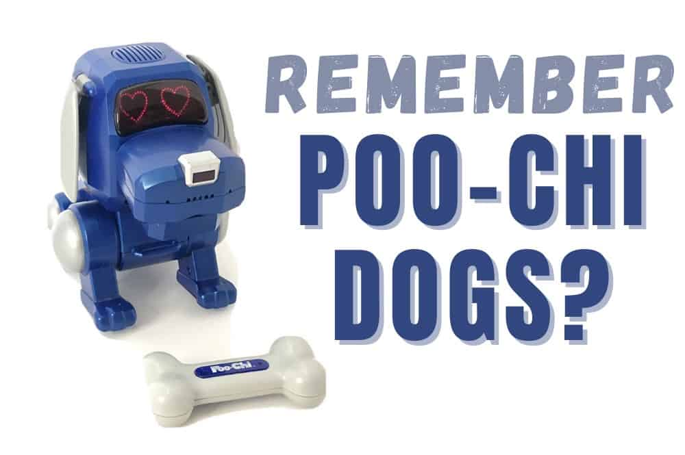 Poo-Chi The Robot Dog Toy From the 2000s